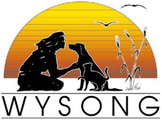 *Wysong logo